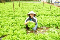 homestay tour of Discovering Farming Activities together with Dalat locals